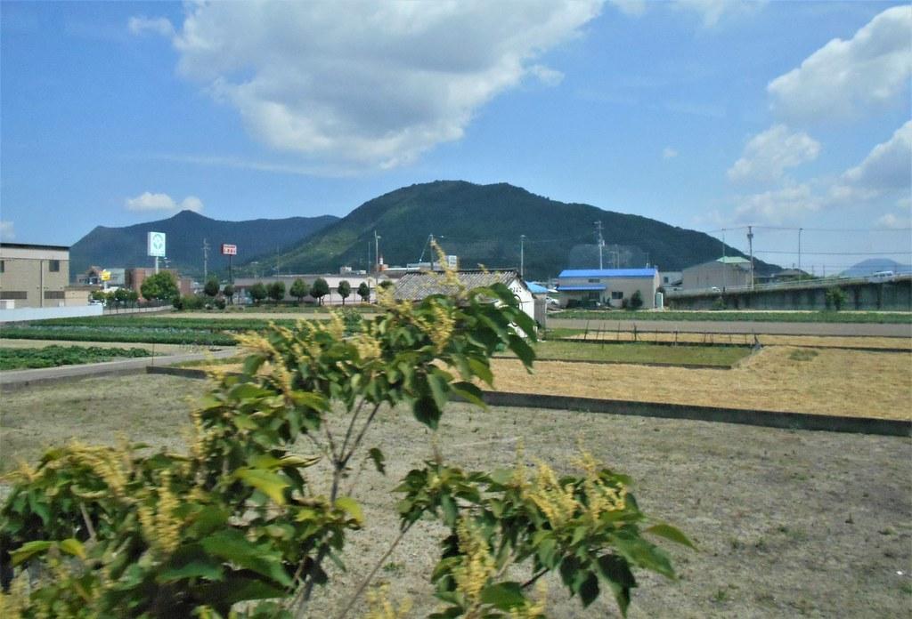 jp-takamatsu-Imabari-train (16)