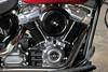 Harley-Davidson 1745 SOFTAIL SLIM FLSL 2019 - 9
