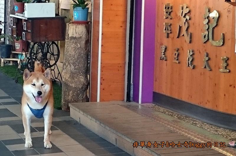 台南景點赤崁樓與美食32茂記黑豆花