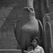 Me and Horus ... by berniedup