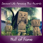 SLAP Award Hall Of Fame