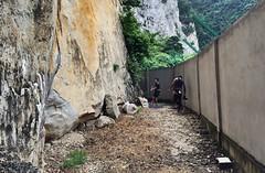 Nanyang Wall, Batu Caves