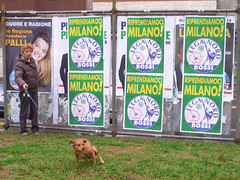 Dogs against fascism. Milano, March 2010.