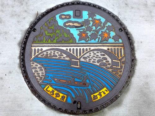 Shiroyama Kanagawa, manhole cover (神奈川県城山町のマンホール)