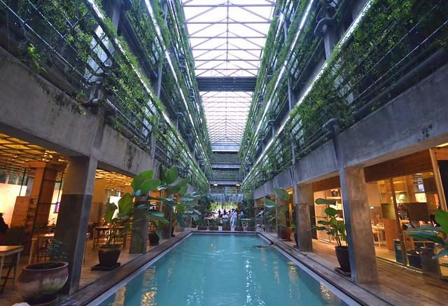 greenhost boutique hotel yogyakarta pool