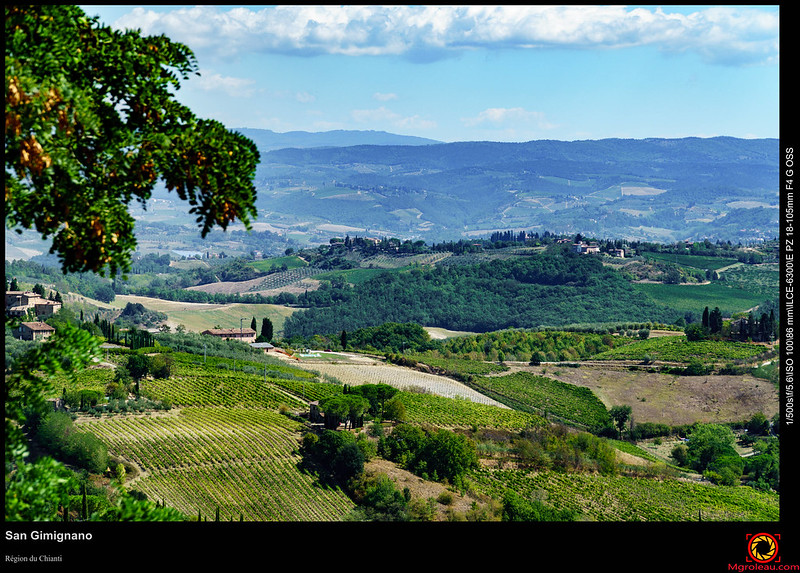 Italie - Florence - Chianti