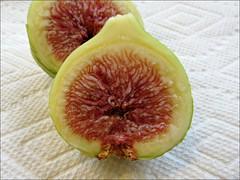 Inside Panache figs