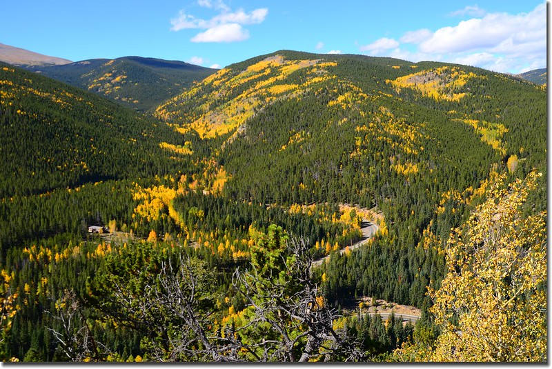 Fall colors, Mount Evans Scenic Byway, Colorado (31)