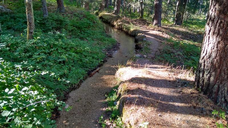 Cruzamos un pequeño arroyo 2