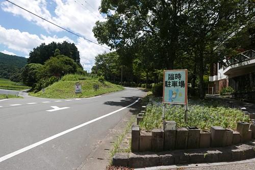 shosukechaya001
