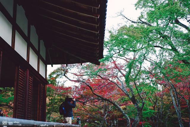 十年,京都四季 | 卷三 | 古都日常 | 07