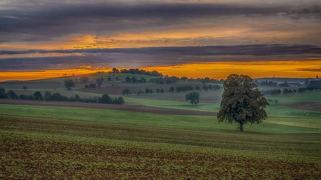 sunrise on empty fields
