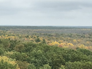 View from the fire tower in St. Croix State Park