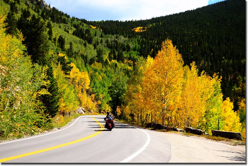 Fall colors, Mount Evans Scenic Byway, Colorado (13)
