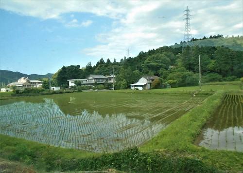 jp-Kannoura-Tokushima-train (15)