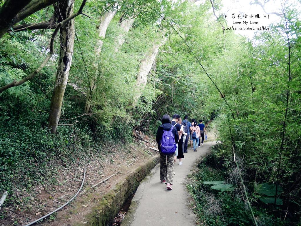 陽明山一日遊景點推薦絹絲瀑布步道 (4)