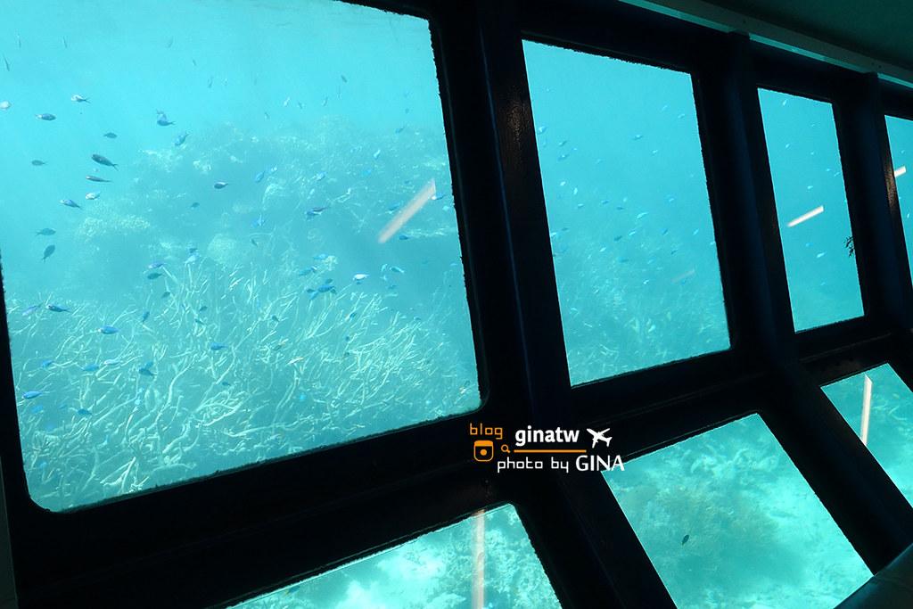 【凱恩斯自由行】澳洲大堡礁|大冒險號|諾曼外堡礁|海上Buffet吃到飽、外堡礁游泳看大堡礁、凱恩斯深潛、水上摩托車 @GINA LIN