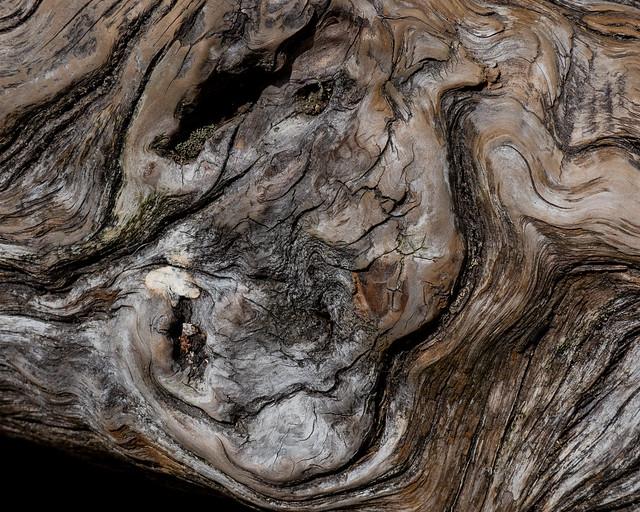 Burnished Wood, Panasonic DMC-FZ300