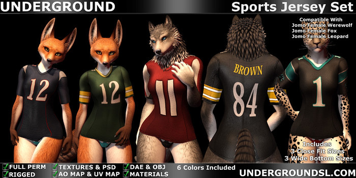 Sports Jersey Set Female Furry - SecondLifeHub.com