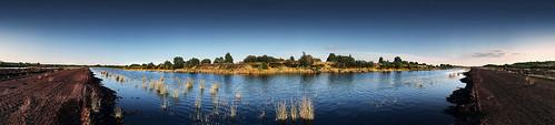 Peatland Panorama