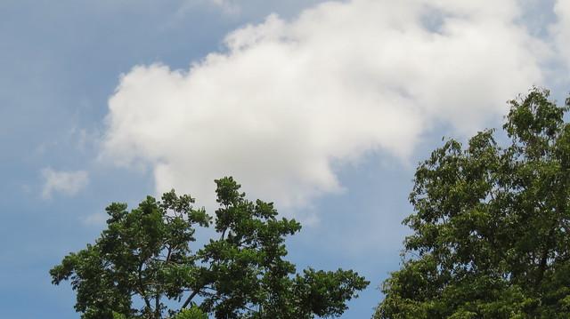 เมฆ, Canon POWERSHOT SX720 HS