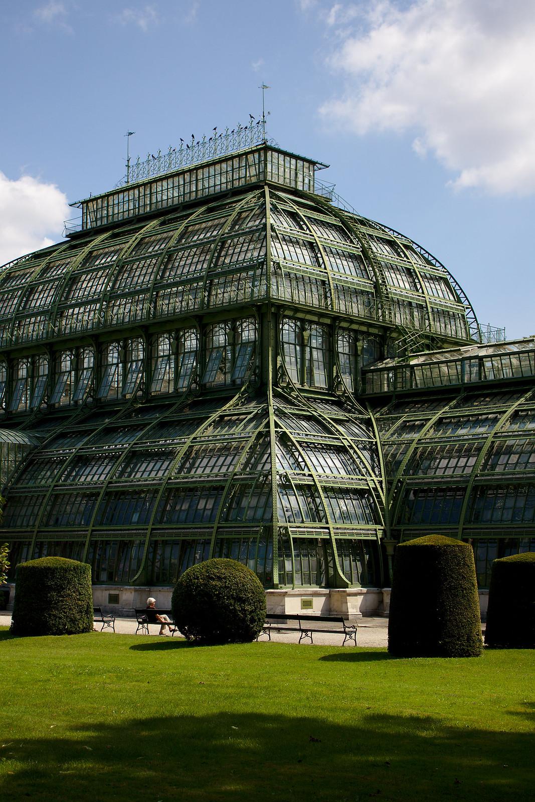 Palm House, Schönbrunn