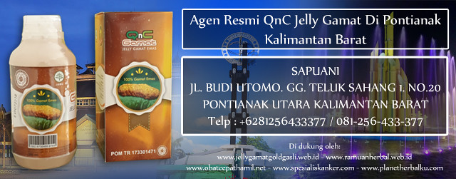 Agen Resmi QnC Jelly Gamat Di Pontianak Kalimantan Barat