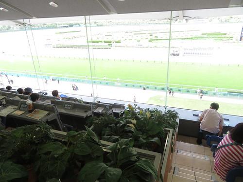 小倉競馬場の4階指定席と一般席の境目