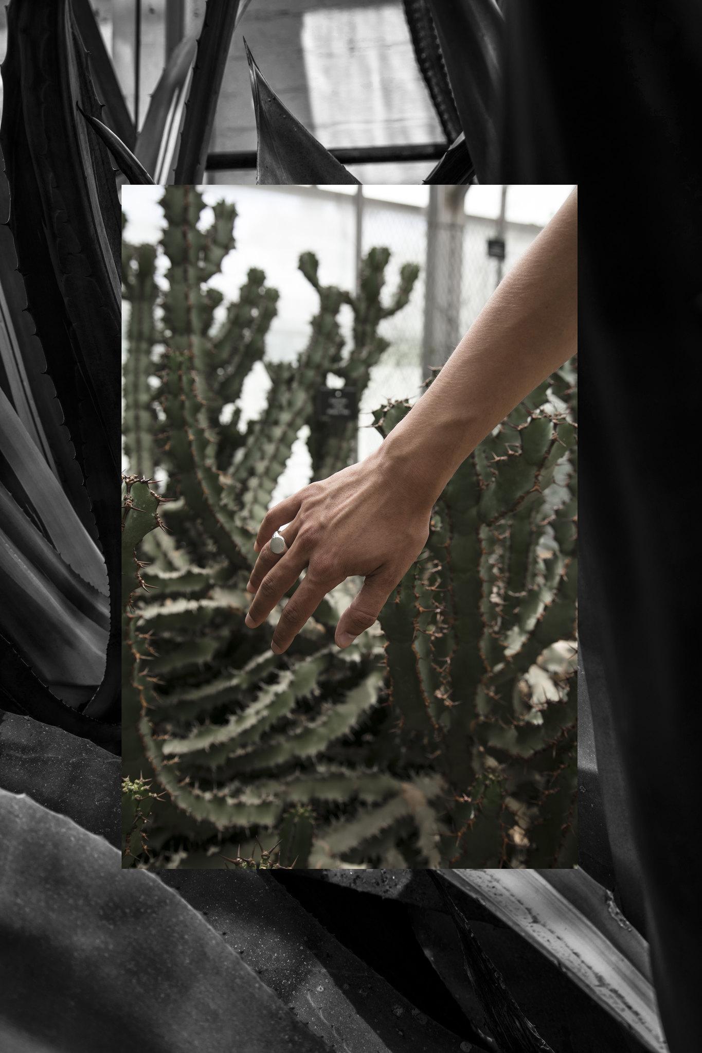 Jordan_Bunker_botanical_gardens_4
