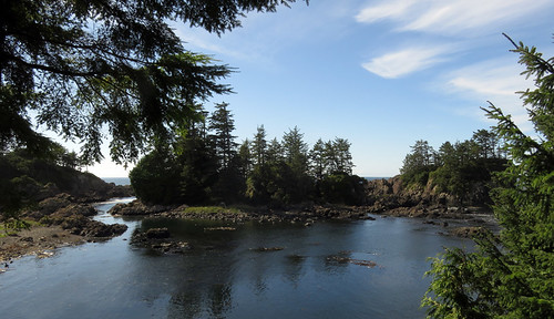 Ocean vista on Ucluelet's Wild Pacific Trail