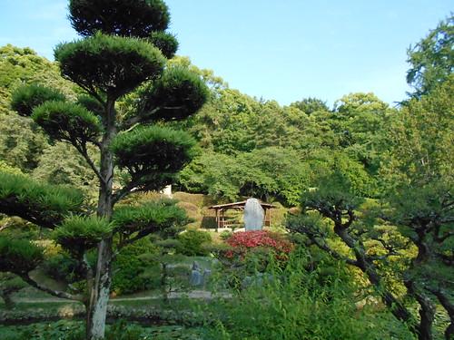jp-matsuyama-Parc Dogo (3)