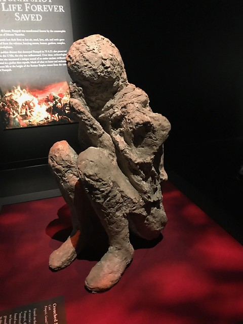 Pompeii cast