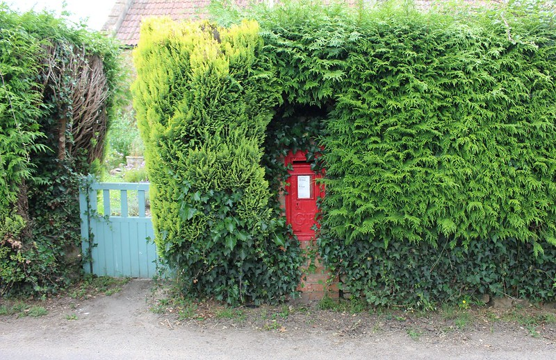 Post box in hedge, Somerset