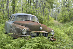 WPort Cars