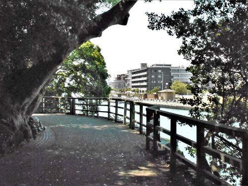 jp-tokushima-am (8)