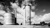 The silos at Lascelles