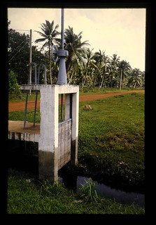 Soils And Agricultural Development Of Tropical Peat Swamps = 熱帯泥炭低湿地の土壌と農業開発