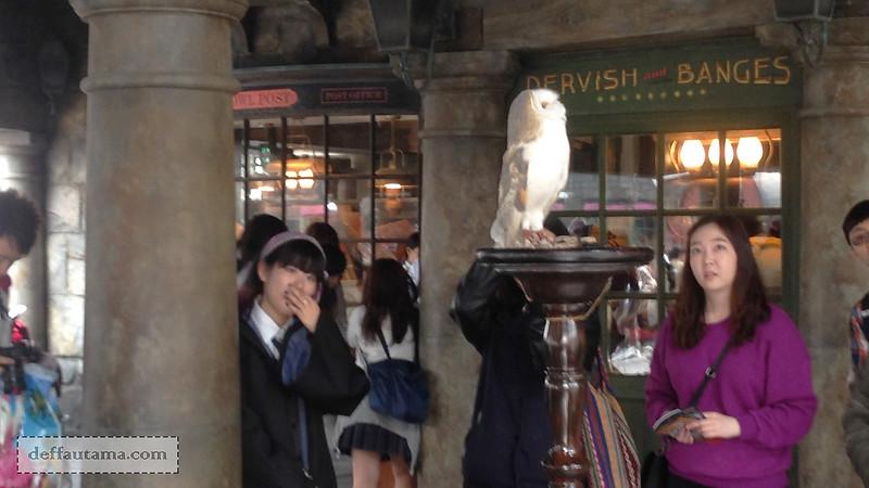 2 Hari Keliling Osaka - Hedwig