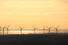 Bald Hills Wind Farm, Gippsland, in late afternoon light