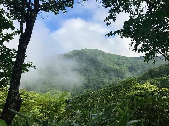 銚子ヶ峰 登山道より山頂