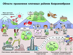 Области применения ключевых районов биоразнообразия / Applications of key biodiversity areas