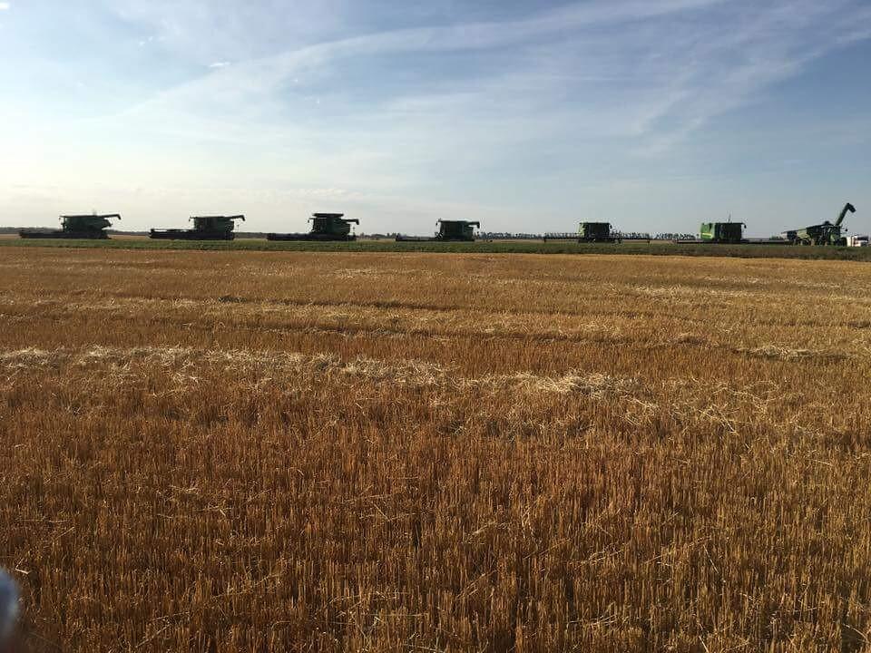 Schemper 2017 - Eastern North Dakota Harvest