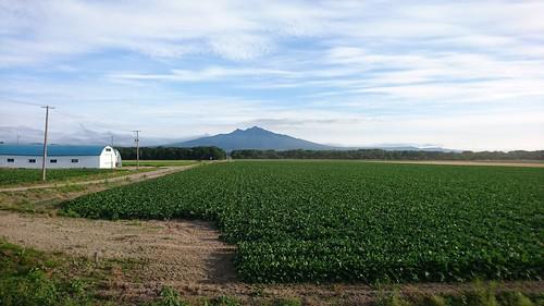 綺麗な山だなあと思ったら百名山の一つ斜里岳だった。