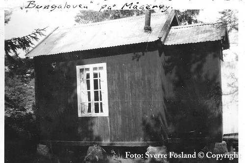 Mågerø (2498)