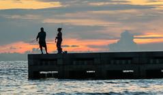 Anna Maria Island Fishing Pier