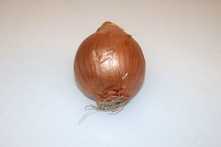 12 - Zutat Zwiebel / Ingredient onion