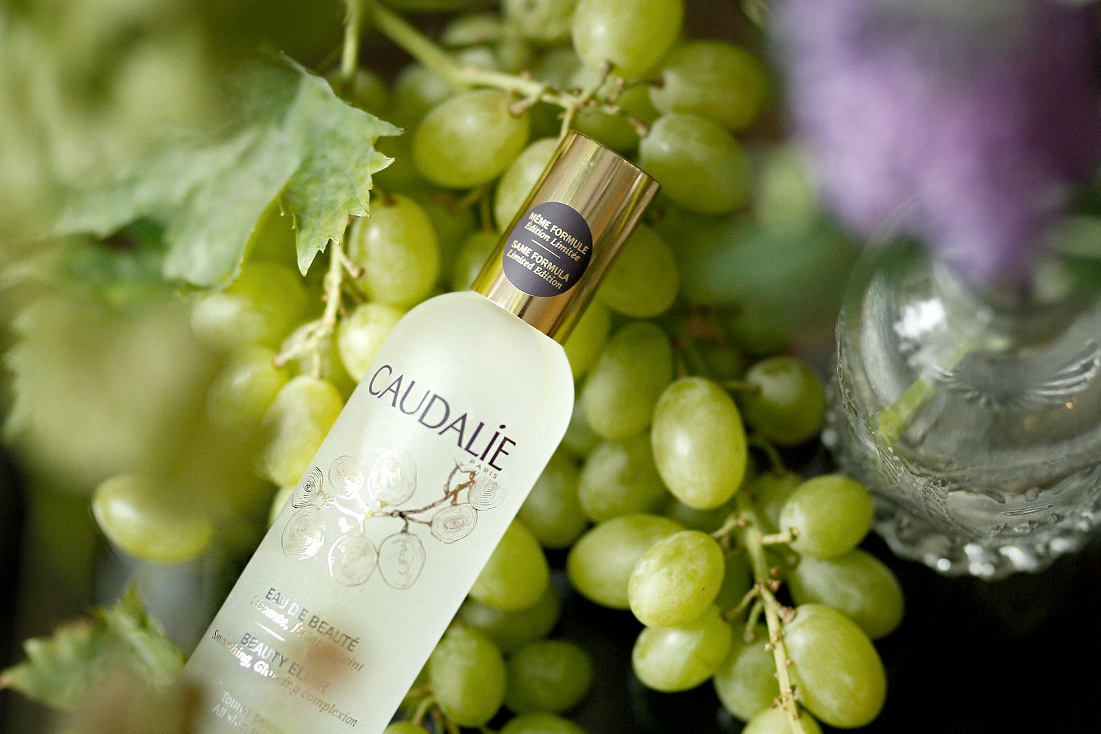 caudalie eau de beauté beauty elixir french beauty wine grapes weintrauben vino vines nature cosmetics mist water spray rosie huntington campaign summer francaise beautyblogger germanblogger cats & dogs beautyblog ricarda schernus düsseldorf 2