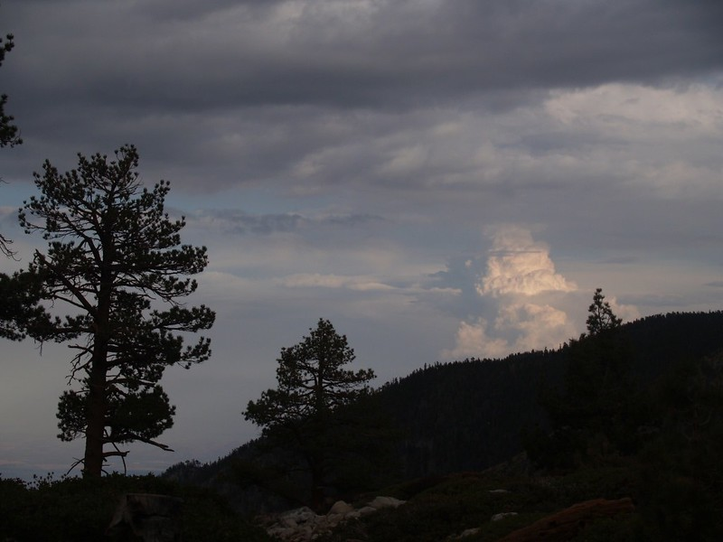 Thunderhead over San Jacinto lit by the late afternoon sun from Mineshaft Flat