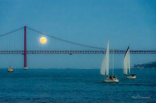 Evening Sail in Lisbon