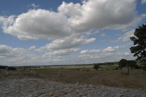 Tenterden to Rye